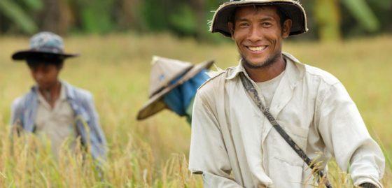 Cargill kiest voor ontbossingsvrije productieketens