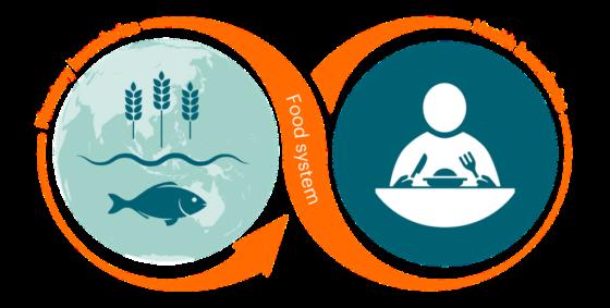 Voedseltransformatie: duurzame productie en gezondere diëten