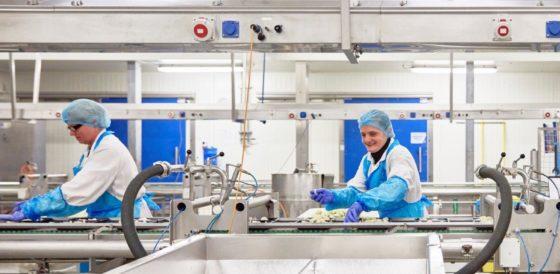 Waalse voedingsbedrijven investeren, maar zoeken geschikte werknemers