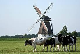 Nederland wil omslag naar kringlooplandbouw nu inzetten