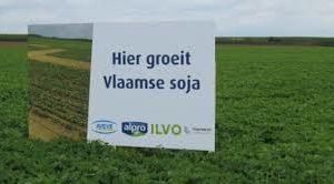"""ILVO en Arvesta: """"Ontdek soja en pionier samen met ons, voor landbouw én klimaat"""""""