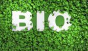 Bio valt steeds meer in de smaak