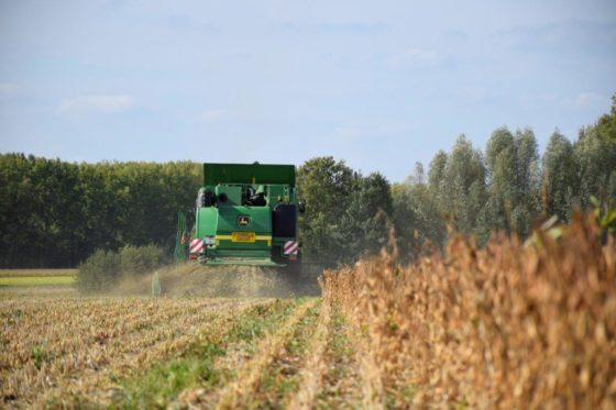 Alpro verwerkt eerste Vlaamse soja