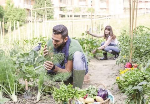 EIT Food: samenwerking voor transformatie voedingssector