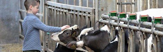 Duidelijk engagement voor duurzame, integere en veilige vleesketen