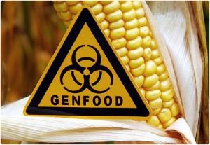 GGO's met gezondheidsvoordelen hebben groot marktpotentieel