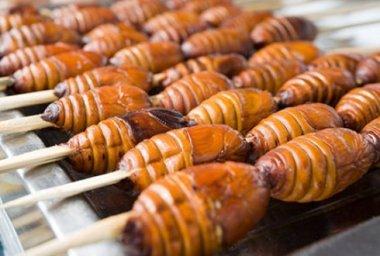 Zijn insecten veilig om te eten?