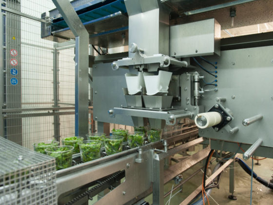 Twaalfkops weger draagt bij aan efficiënte productie