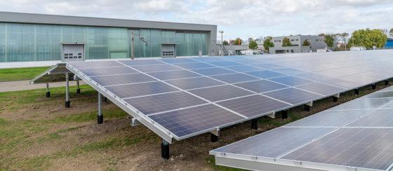 Fabriek Palsgaard in Nederland is CO2-neutraal