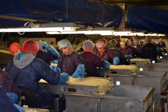 Online onderzoek UGent voedsel-veiligheidsklimaat