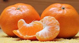 Fruit Juice Summit: Gezond en duurzaam fruitsap