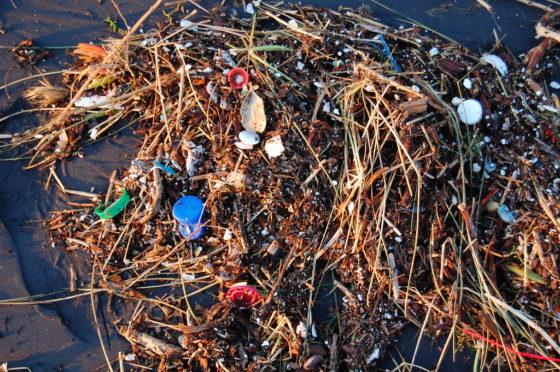 ILVO en KBIN-OD natuur inventariseren macro- en microplastics in visserijgebieden