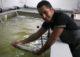 Nood aan innovatieve aquacultuur